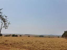 Fazenda 30 Alqueires | 100 km Goiânia-GO | Planta 70%