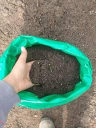 Terra vegetal adubada R$15