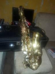 Sax alto winner zerado