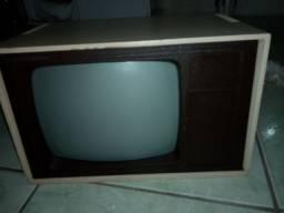 Monitor computador antigo. p decoração .leia