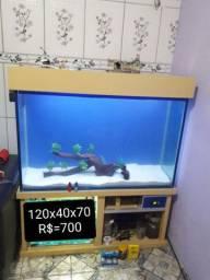 Aquário 120x40x70