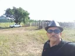 Excelente fazenda com 964 tarefas em Candeal Bahia, casa sede e curral