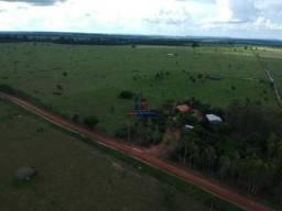 Fazenda à venda, por R$ 5.100.000 - Centro - Costa Marques/RO