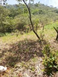 Terreno ou sitio 2.000 metros(20 x 100) Guapimirim/Rj