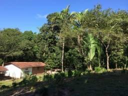 Fazenda Vender - AXIXÁ/MA