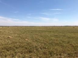 Fazenda - 25 Alqueires - Acreúna - R$170.000 por Alqueire