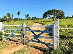 Belíssimo Sitio plano de 50 hectares em Corumbá MS