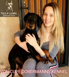 Promoção Filhotes de Doberman com Pedigree Dobermann filhote