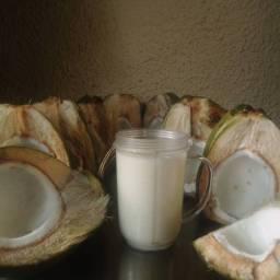Polpa coco