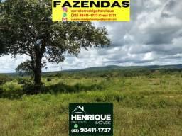 Título do anúncio: Vendo Fazenda no município de Abreulândia 200 alq terra preta