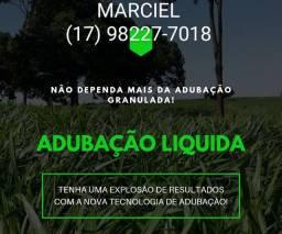 Título do anúncio: ALTA PRODUÇÃO BAIXO CUSTO