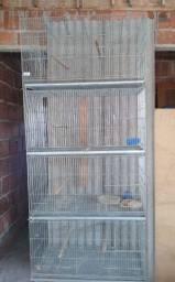 Gaiola para vários tipos de pássaros