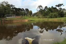 Chácara para Venda em Rio do Salto Rio Negrinho-SC