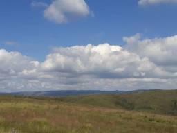 Fazenda Minas Gerais 70 alqueires 1.700,000 aceita 95% em imovel RP