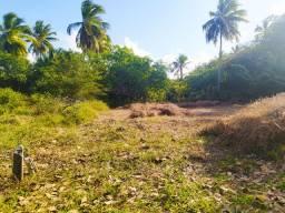 Terreno Em Itamaracá - PILAR - Plano - Ventilado - Água Potável
