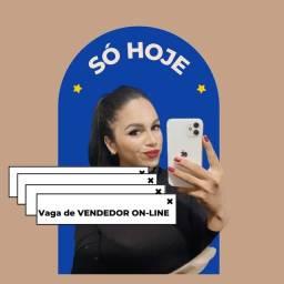 Título do anúncio: Vendedor(a) on-line