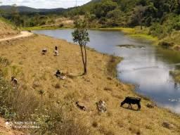 Fazenda em Novo Cruzeiro MG