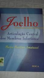 Joelho Articulação Central dos Membros Inferiores