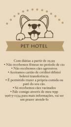 Hotel pra cachorro