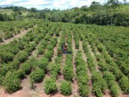 Chácara à venda, por R$ 250.000 - Zona Rural - Nova Brasilândia D'Oeste/RO
