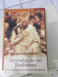 Livro Introdução ao Budismo comprar usado  Cambé