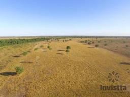 Fazenda para Integração Lavoura e Pecuária no Vale do Araguaia