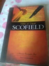 Bíblia de Estudos Scofield
