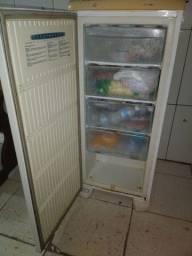 freezer em perfeita condições de uso! 450,00