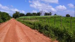 Fazenda em Pentecoste 230 hectares boa estrutura,prado,baias,estabulo,poços,topo negociar