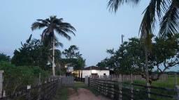 Chacara estilo fazenda