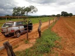 Fazenda pronta e terra de Cultura Municipio Cocalzinho