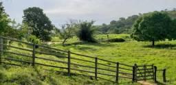 Fazenda 10,5 alqueires Próximo de Governador Valadares