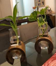 Planta+suporte+copo+pedra