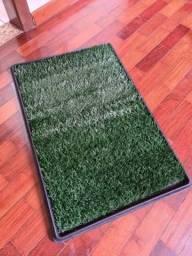 Sanitário de grama para cachorro