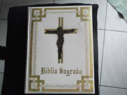 Vendo Bíblia Sagrada da Religião Católica