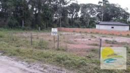 Terreno à venda, 300 m² Limpo e aterrado Brandalize - Itapoá/SC TE0443