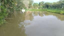 Chácara com piscina para eventos em Araucária