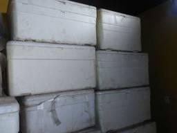 Caixa de Isopor 150L