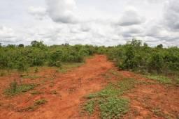 Fazenda com 882 hectares na região de Curvelo
