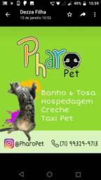 Pharo Pet!