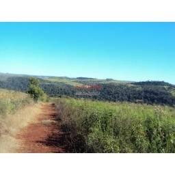 Fazenda de 70 alq. região Rio do Salto