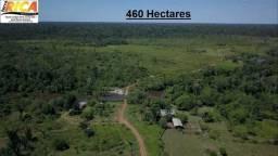 Fazenda com 460 Hectares à venda em Canutama - Manaus/AM-Cód FA0120