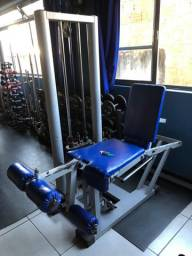 Cadeira Flexora/extensora