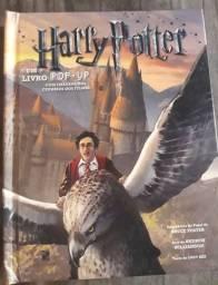 Harry Potter : A Pop-Up Livro