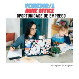 Procura-se vendedor home office