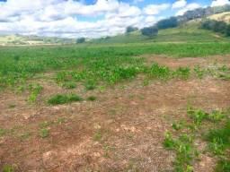 Fazenda de 86 alqueires à 200 metros da Fernão Dias no Sul de MG