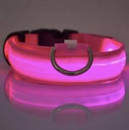 Lançamento Coleira LED para seu animal de estimação cachorro
