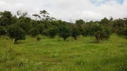 Fazenda com 90 hectares no Cantá/RR, vila santa rita, ler descrição do anuncio