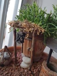 Mini jardins de fadas