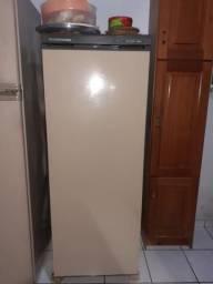 Freezer Prosdocimo F21